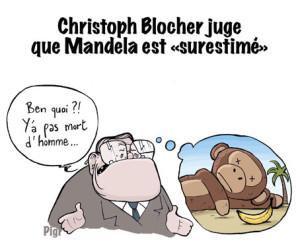Christoph Blocher, Mandela, singe, raciste