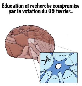 Cerveau, neuronne, Suisse, Europe, isolée, Erasmus