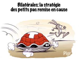 carapace, tortue, lièvre, repli, Suisse, Europe